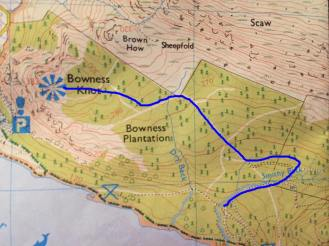 The extra walk up to Bowness Knott. My blue lines are a bit wobbly, but hopefully you get the idea! Come back the way you went up.