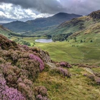 View of Blea Tarn from Side Pike
