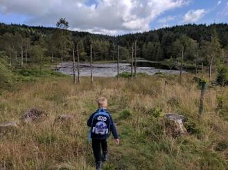Headed down to the reservoir near Gummer's How