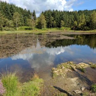 Reservoir near Gummer's How
